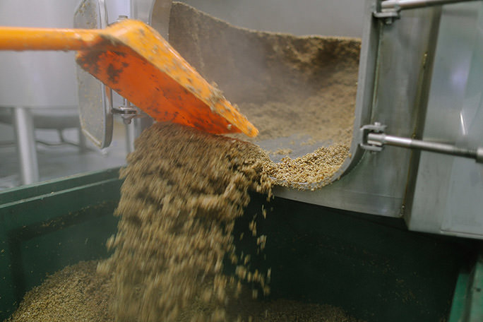 scooping out the spent grain from the mash tun
